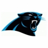 Carolina Panthers Alternate Primary Logo <2012-Present> Iron On Transfers Wholesale 30pcs/lotiron o