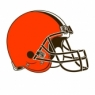 Cleveland Browns 2015-Pres Primary Logo diy iron on transfers Wholesale 30pcs/lot