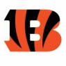 Cincinnati Bengals Primary Logo <2004-Present> Iron On Transfers Wholesale 30pcs/lot