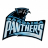 Carolina Panthers Alternate Logo <1995-Present> Iron On Transfers Version 4 Wholesale 30pcs/lot
