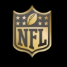 National Football League 2015 Anniversary Logo diy iron on transfers Wholesale 30pcs/lot