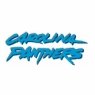 Carolina Panthers Script Logo <1996-Present> Iron On Transfers Wholesale 30pcs/lot