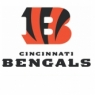 Cincinnati Bengals Alternate Logo <2004-Present> Iron On Transfers Version Wholesale 30pcs/lot