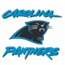Carolina Panthers Alternate Logo <1996-Present> Iron On Transfers Wholesale 30pcs/lot